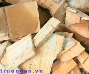 Thuốc diệt mối gỗ hiệu quả