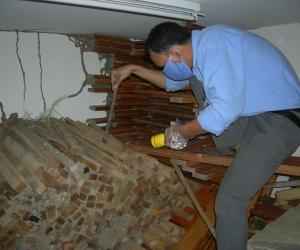 Mối Cắn phá vào sản phẩm  gỗ thành phẩm