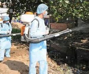 Dịch vụ diệt côn trùng Gián, Bọ, Ve, Ruồi, Muỗi.